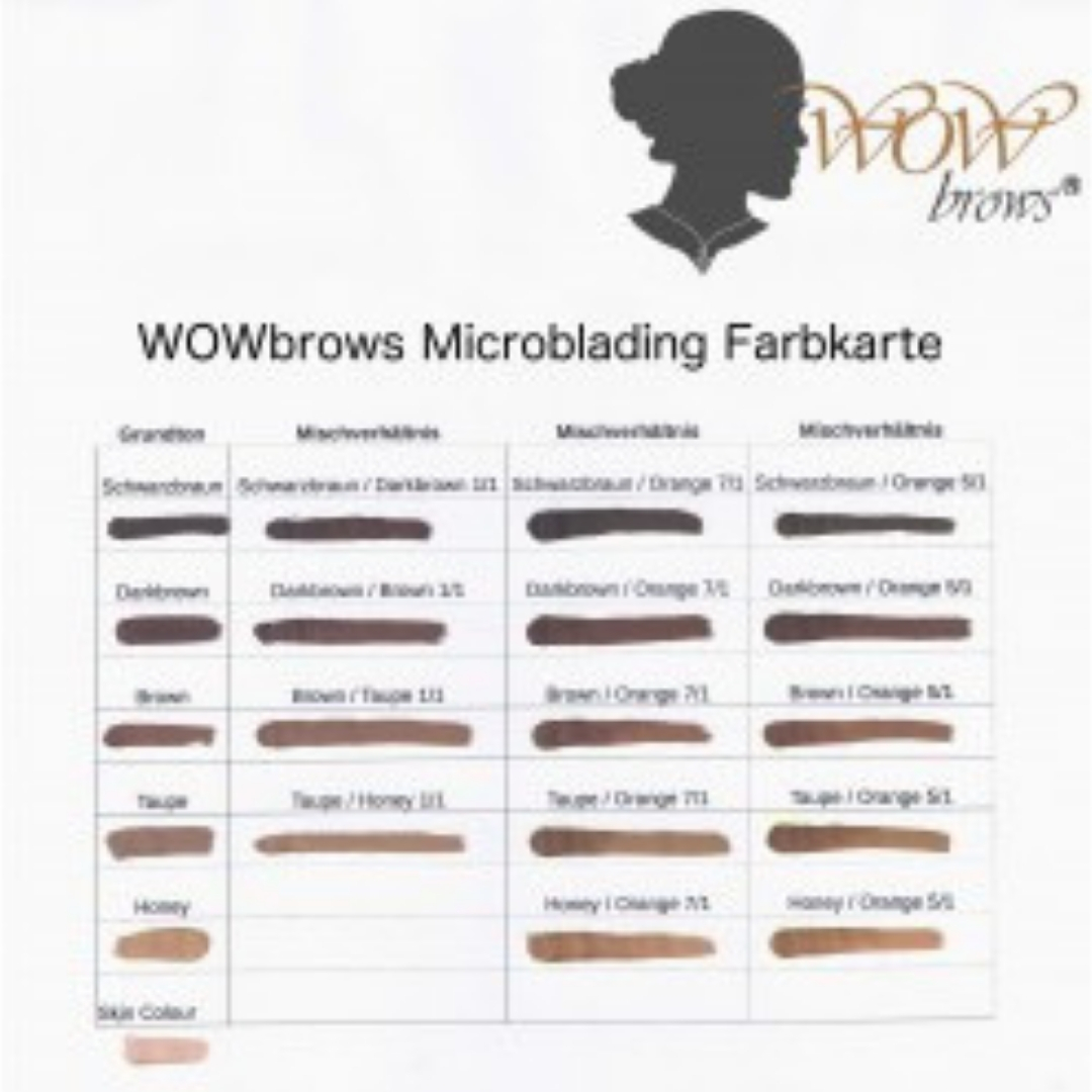 Farbauswahl Microblading Wimpernliebe